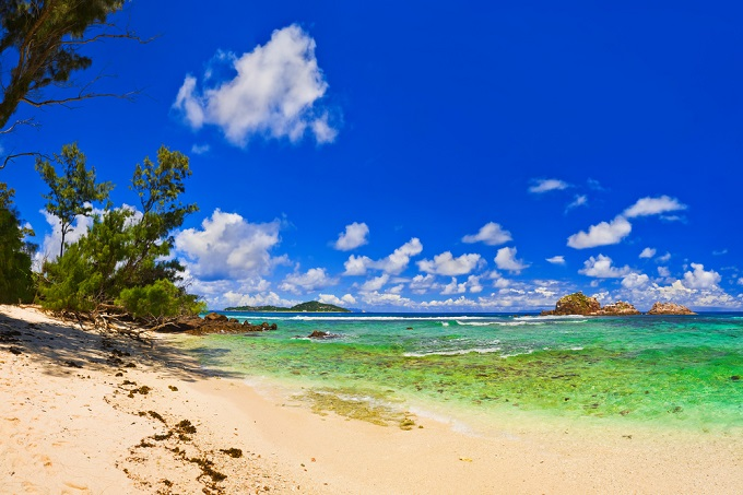 Cousin Island, Seychellen | Leben im Stil: die exklusivsten Privatinseln der Welt  Leben im Stil: die exklusivsten Privatinseln der Welt Leben im Stil exklusivsten Privatinseln der Welt cousin island seychelles
