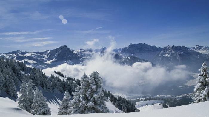 Die Reise in die Alpen  Die Reise in die Alpen Wohnen mit Klassikern 50 shades of grey Buch