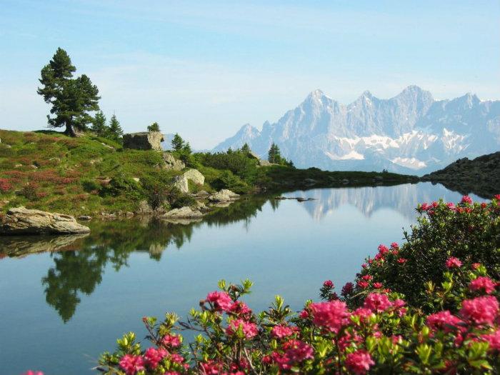 Die Reise in die Alpen  Die Reise in die Alpen Wohnen mit Klassikern 50 shades of grey Film