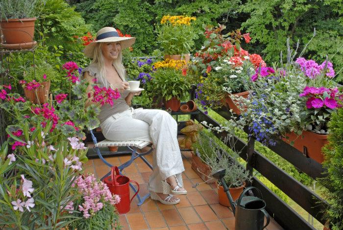 Frühling mit Blumenkästen  Frühling mit Blumenkästen Fotolia wohnen mit klassikern Fr  hling mit Blumenk  sten