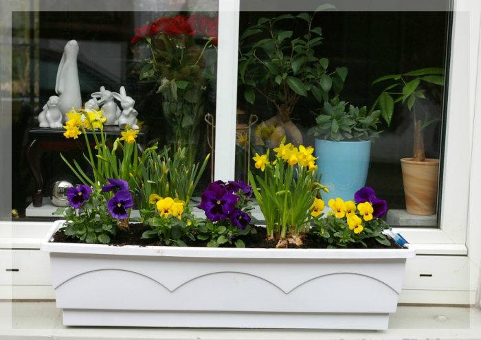 Frühling mit Blumenkästen  Frühling mit Blumenkästen wohnen mit klassikern Fr  hling mit Blumenk  sten photos