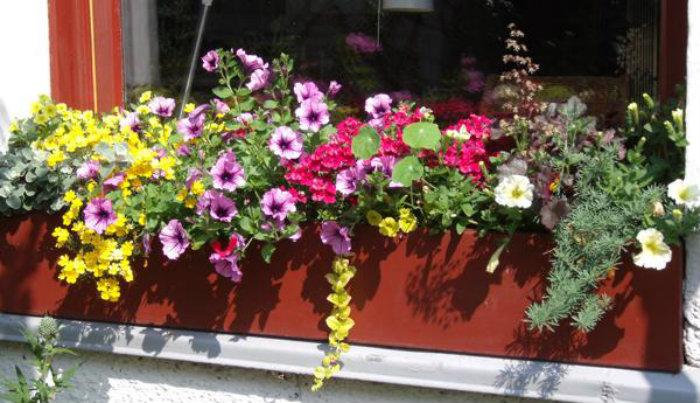 Frühling mit Blumenkästen  Frühling mit Blumenkästen wohnen mit klassikern Fr  hling mit Blumenk  sten