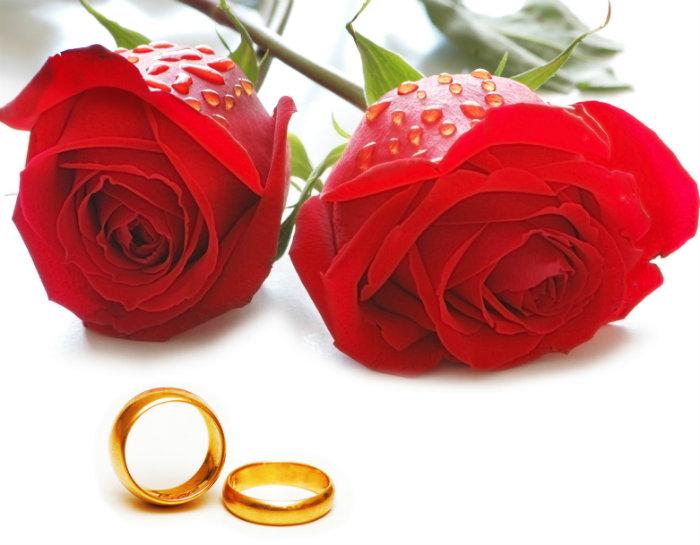 wohnen-mit-klassikern-Ihre-Vorbereitung-für-die-Hochzeit-13  Ihre Vorbereitung für die Hochzeit wohnen mit klassikern Ihre Vorbereitung f  r die Hochzeit 13