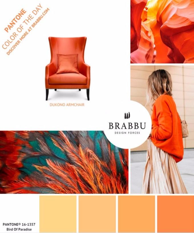Unglaubliche Exklusive Möbel Design mit Pantone Farben exklusive möbel design Unglaubliche Exklusive Möbel Design mit Pantone Farben Bird of Paradise