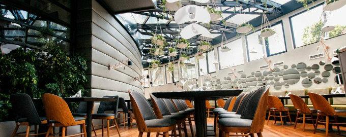 Die hängenden Gärten von Berthelot´s Restaurant berthelot´s restaurant Die hängenden Gärten von Berthelot´s Restaurant 11022572 953988007992782 5246455996573086709 o 1