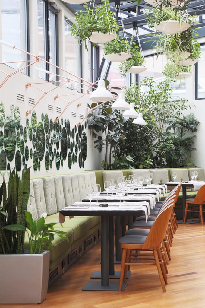 Die hängenden Gärten von Berthelot´s Restaurant berthelot´s restaurant Die hängenden Gärten von Berthelot´s Restaurant lovecolours restaurant berthelot 1