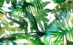 pantone farben 2017 Die modernsten Herbst Schlafzimmer Trends mit Pantone Farben 2017  60590A1397613BA2891BF68A0680EB412C872842FFC88464FC pimgpsh fullsize distr 240x150
